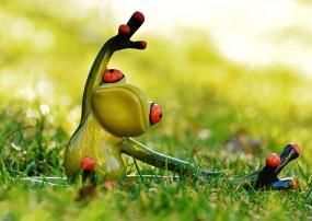 frog yoga 1