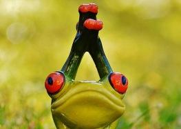 frog yoga 3