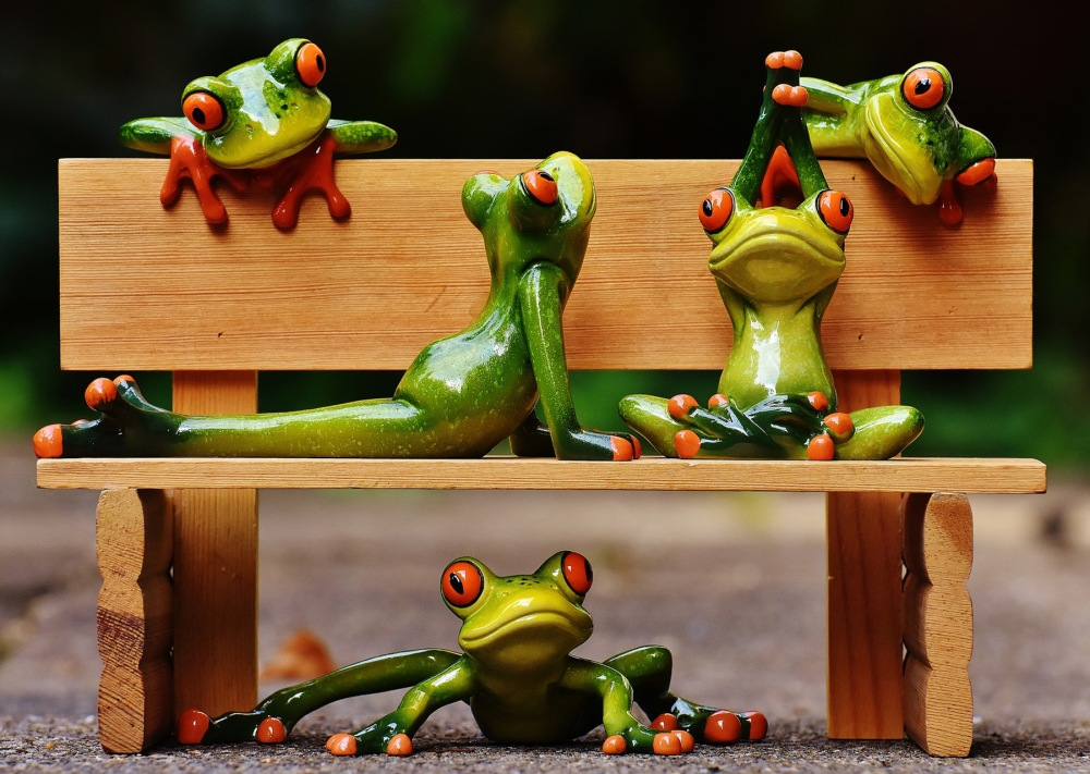 frogs yoga
